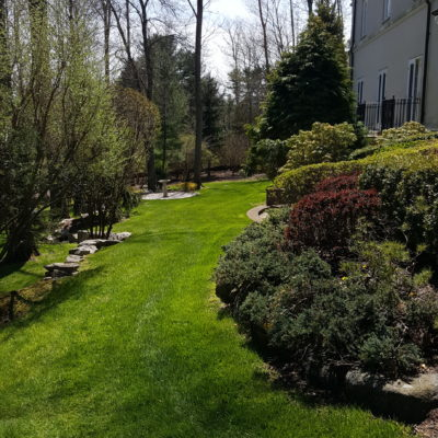 Optimal Watering Practices for you lawn in Darien CT in Fairfield County