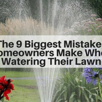 The 9 Biggest Mistakes Homeowners Make When Watering Their Lawn