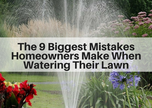 9 biggest mistakes homeowners make when watering their lawn   Fairfield County CT Lawn Care