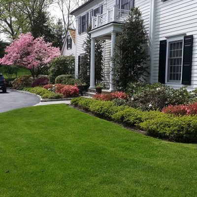 Fairfield County CT What is proper mowing height for your lawn