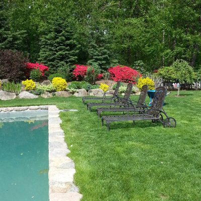 Keeping your lawn healthy and lush in Darien CT