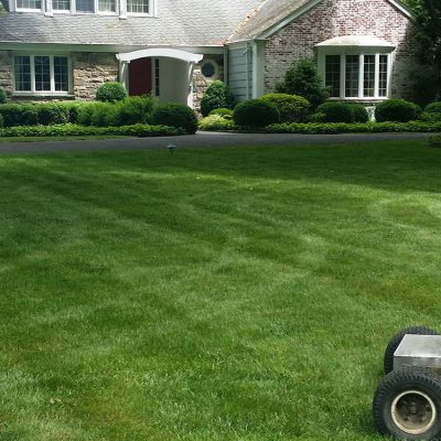 Watering your lawn: What is best time of day to water your lawn. Darien CT, Fairfield County