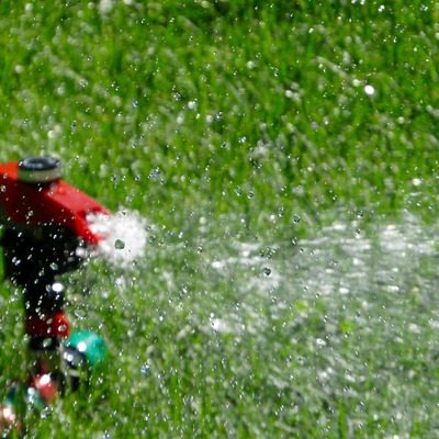 mistakes to avoid when watering your lawn - Fairfield County