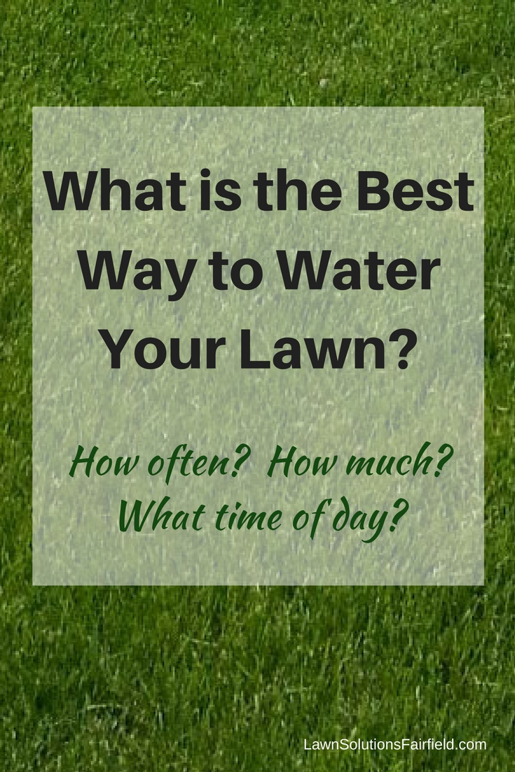 Best way to water your Fairfield CT lawn