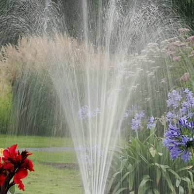 Common mistakes people make when watering their lawn
