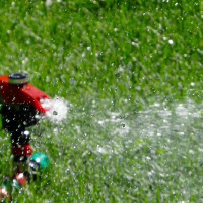 Watering your lawn in Fairfield CT